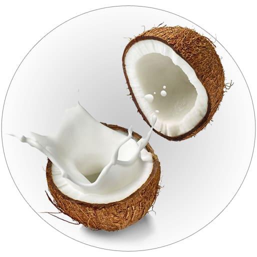Isoamyl Cocoate