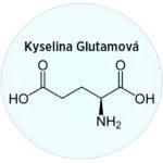 Kyselina Glutamová