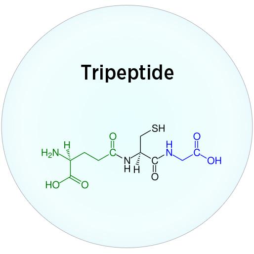 Tripeptid