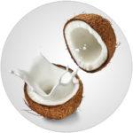 Sodium Cocoate