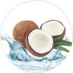 Kokosové alkany